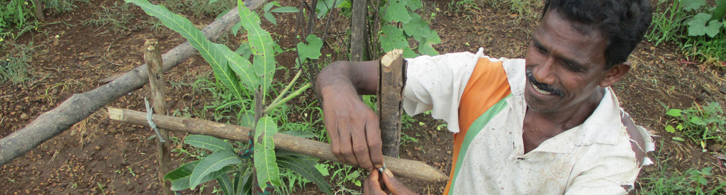 agricutlure hero